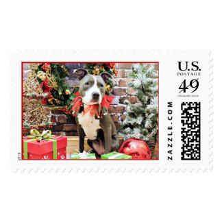 Christmas - Pitbull - Charm Postage