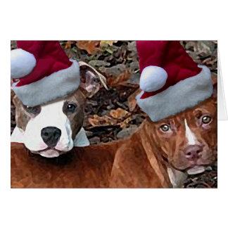 Christmas Pitbull Puppies Greeting Cards