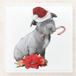 Christmas pitbull puppy glass coaster