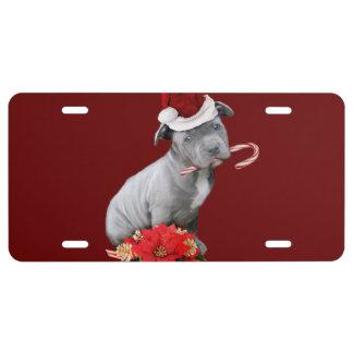 Christmas Pitbull puppy License Plate