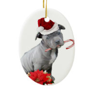 Christmas pitbull puppy Double-Sided oval ceramic christmas ornament