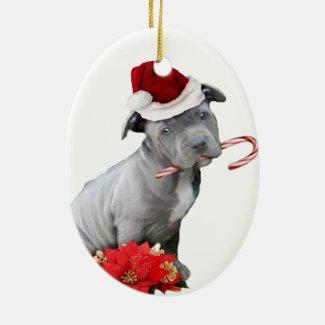 Pit Bull Ornaments   Pitbull Christmas Tree Ornaments