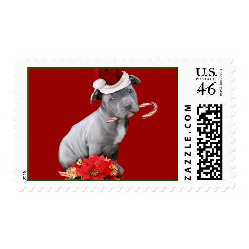 Christmas Pitbull puppy Stamp