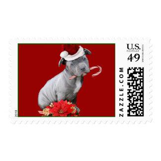 Christmas Pitbull puppy Postage Stamp