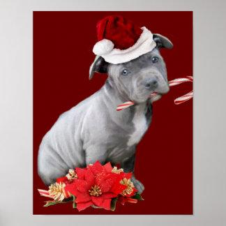Christmas Pitbull puppy Poster