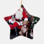 Christmas - Pitbulls - Mia & Lucian Ornaments