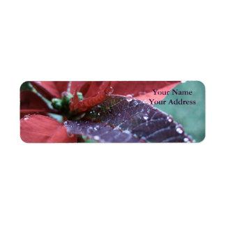 Christmas Poinsetta Custom Return Address Label