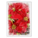 Christmas Poinsettia Cards