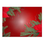 Christmas Poinsettia Red Postcard