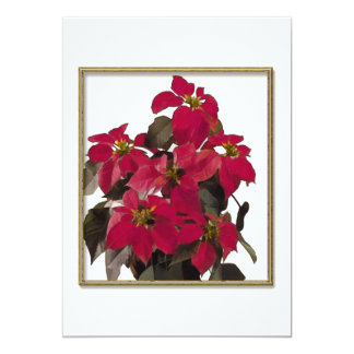 Christmas Pointsettia Plant in Gold Frame Card