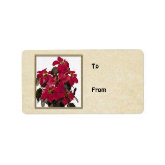 Christmas Pointsettia Plant in Gold Frame Label