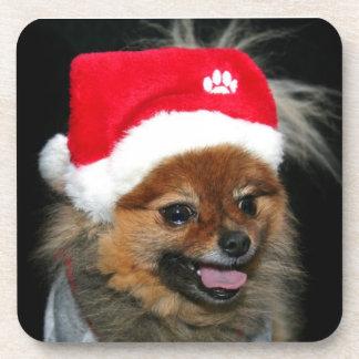 Christmas pomeranian dog beverage coaster