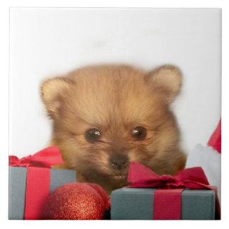 Christmas Pomeranian puppy Tile