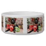 Christmas - Poodle - Beamer Dog Water Bowls