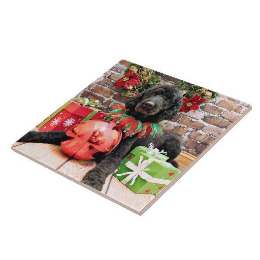 Christmas - Poodle - Beamer Tiles