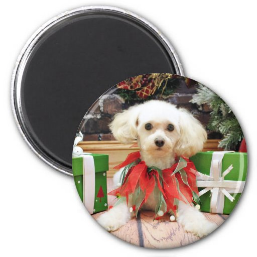 Christmas - Poodle - Cricket 2 Inch Round Magnet