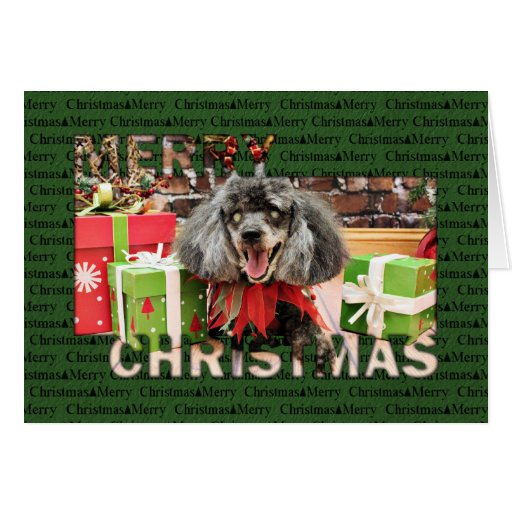 Christmas - Poodle - Max Card