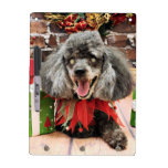 Christmas - Poodle - Max Dry Erase Boards