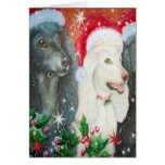 Christmas Poodles Card