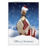 Christmas Puffin Card With Puffin Stocking And Gif