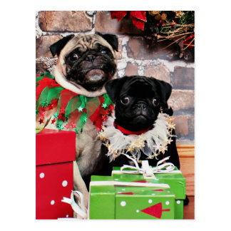 Christmas - Pug - Daisy Mae and Lily Lou Postcard