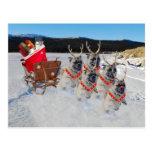 Christmas Pug Dogs Pulling a Sleigh Postcard