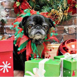 Christmas - Pug - Michaelis Standing Photo Sculpture