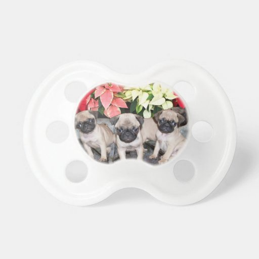 Christmas pug puppies BooginHead pacifier