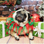 Christmas - Pug - Spencer Cut Outs