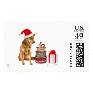 Christmas pup with gift tins postage