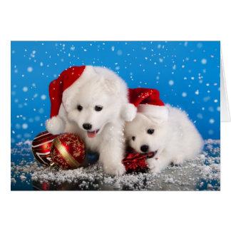 Christmas Puppies White Pomeranian Spitz Card