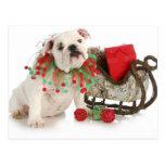 Christmas Puppy - English Bulldog Puppy Sitting Postcard