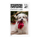 Christmas Puppy Postage Stamps