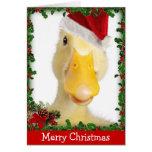 Christmas Quack Cards