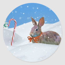 Christmas, Rabbit, Snow, Candy Canes Classic Round Sticker