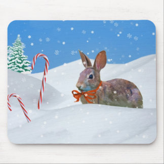 Christmas, Rabbit, Snow, Candy Canes Mouse Pad