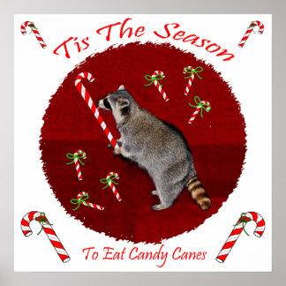 Christmas Raccoon Poster