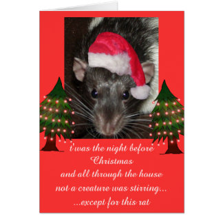 Christmas rats cards
