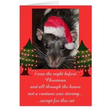mindgoop Christmas rats card