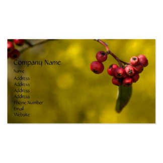 Christmas Red Berries Business Card