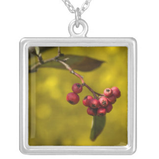 Christmas Red Berries Square Pendant Necklace