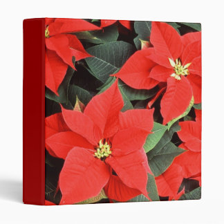 Christmas Red Poinsettia Plants 3 Ring Binder