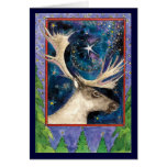 Christmas Reindeer at Night with a Shining Star Cards