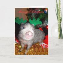 Christmas Reindeer Pig, Greeting Card
