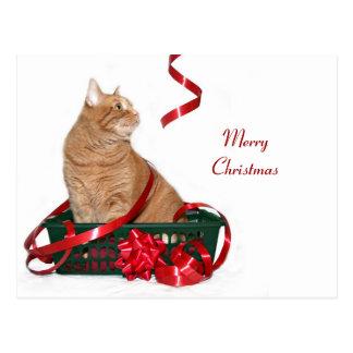 Christmas ribbon kitty postcard