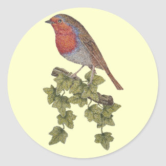 Christmas Robin and ivy leaves illustration Classic Round Sticker