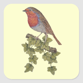 Christmas Robin and ivy leaves illustration Square Sticker