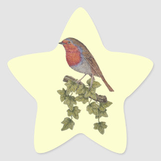 Christmas Robin and ivy leaves illustration Star Sticker