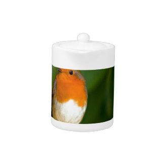 Christmas Robin Teapot