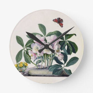 Christmas Rose (Helleborus niger) and Winter Aconi Round Clock